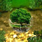 La conversion écologique de La Xavière